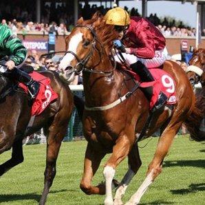 haydock races article
